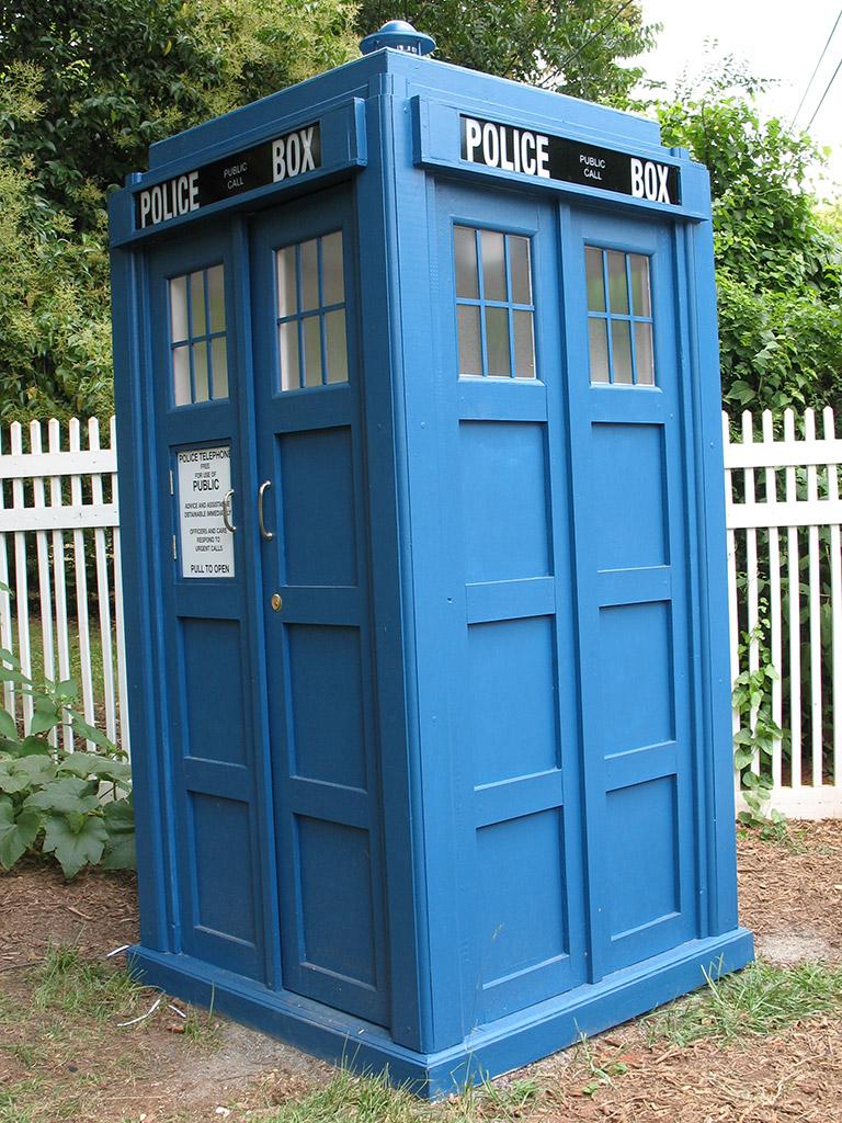 2014-VivianColeman-TARDIS